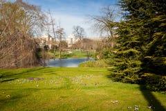 Parque tranquilo con una charca y los wildflowers fotografía de archivo