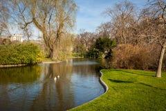 Parque tranquilo con una charca y los wildflowers fotografía de archivo libre de regalías