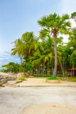 Parque tropical Fotos de archivo