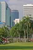 Parque tropical de la ciudad Fotos de archivo libres de regalías