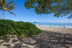 Parque tropical de surpresa Oahu Havaí da praia de Kalama imagem de stock royalty free
