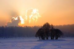 Parque Tsaritsyno de Moscovo no inverno Fotos de Stock Royalty Free