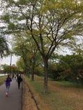 Parque urbano imagen de archivo libre de regalías