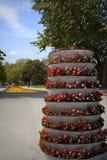 Parque urbano de conexión en cascada de los potes de flores Imagen de archivo libre de regalías