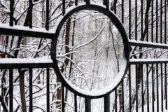 Parque urbano snow-covered silencioso no inverno Imagem de Stock Royalty Free