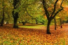 Parque vacío por una mañana del otoño Foto de archivo libre de regalías