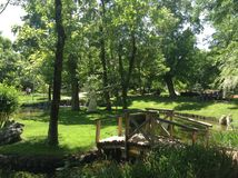 Parque verde Fotos de archivo libres de regalías