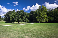 Parque verde Imágenes de archivo libres de regalías