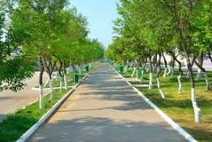 Parque verde Foto de Stock