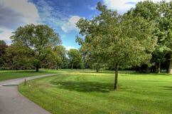 Parque verde Fotos de Stock