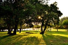 Parque verde croata Foto de archivo