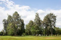 Parque verde da paisagem Fotografia de Stock Royalty Free
