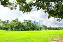 Parque verde de la ciudad Imágenes de archivo libres de regalías
