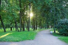 Parque verde de la ciudad Foto de archivo libre de regalías