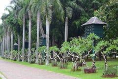 Parque verde de la ciudad Imagen de archivo