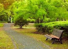 Parque verde de la ciudad. Shangai, China Fotografía de archivo