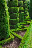Parque verde decorativo - jardim botânico Funchal, Imagem de Stock Royalty Free