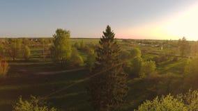 Parque verde del verano Puesta del sol Cámara alrededor Cantidad aérea metrajes