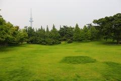 Parque verde en ciudad Foto de archivo libre de regalías
