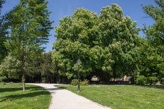 Parque verde en Zagreb, Croacia imagenes de archivo