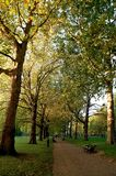 Parque verde, Londres Imagem de Stock