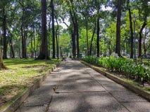 Parque verde na cidade de Ho Chi Minh no verão imagens de stock