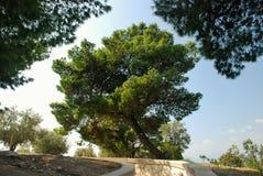 Parque verde no centro de Nafplion Fotos de Stock