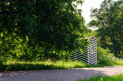 Parque verde selvagem Fotografia de Stock