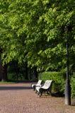 Parque verde selvagem Foto de Stock Royalty Free