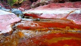 Parque vermelho dos lagos Waterton da garganta da rocha video estoque