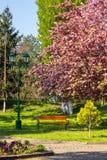 Parque viejo de la ciudad con la linterna Imágenes de archivo libres de regalías