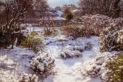 Parque Viena de Setagaya Imagen de archivo libre de regalías