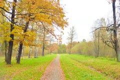 Parque y calzada en el otoño Fotografía de archivo libre de regalías