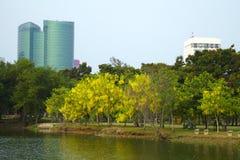 Parque y edificio urbano imágenes de archivo libres de regalías