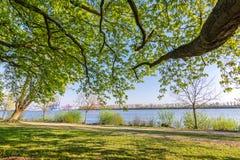Parque y pista de senderismo en el río Elba en Hamburgo, Alemania fotos de archivo