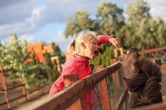 Parque zoológico Imagen de archivo libre de regalías