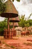 Parque zoológico africano del elefante del bosque Imagen de archivo