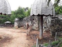 Parque zoológico de Dusit o conocido popular como dinar Wana de Khao fotos de archivo