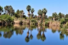 Parque zoológico de Phoenix, centro para la protección de naturaleza, Phoenix, Arizona, Estados Unidos de Arizona Fotos de archivo libres de regalías