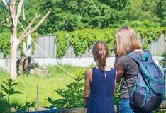 Parque zoológico que visita de la familia Fotografía de archivo libre de regalías