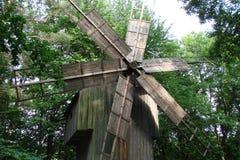 Parquee el área de la ciudad de Lviv en Ucrania occidental Arboleda de Shevchenkivsky del Central Park fotografía de archivo libre de regalías