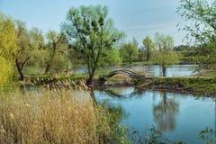Parquee el paisaje con una charca y un puente en tonos verdes y amarillos Foto de archivo libre de regalías