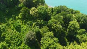 Parquee la mentira en las colinas en la costa, turismo ecológico en la naturaleza, vacaciones de verano, visión superior metrajes