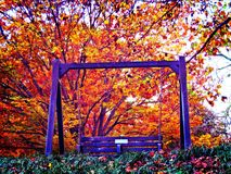 Parques de Atlanta Imagens de Stock Royalty Free