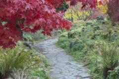Parques de Southampton en otoño imagen de archivo