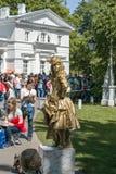 Parques de St Petersburg Imágenes de archivo libres de regalías