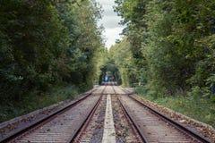 Parques del bosque del otoño de Moscú, Rusia Tranvía imágenes de archivo libres de regalías