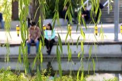 Parques do Pequim Uma data romântica pelo lago fotografia de stock