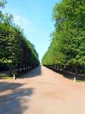 Parques e jardins no palácio de Peterhof Imagens de Stock Royalty Free