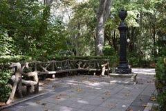 Parques em uma floresta Fotografia de Stock Royalty Free
